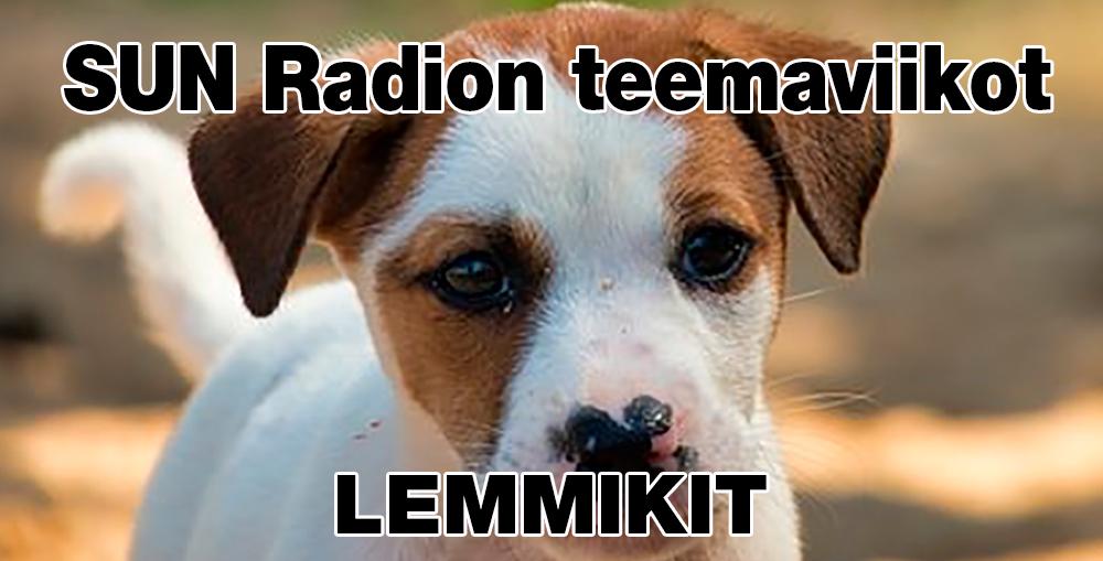 Sun-Radio-Lemmikiti-1000x509