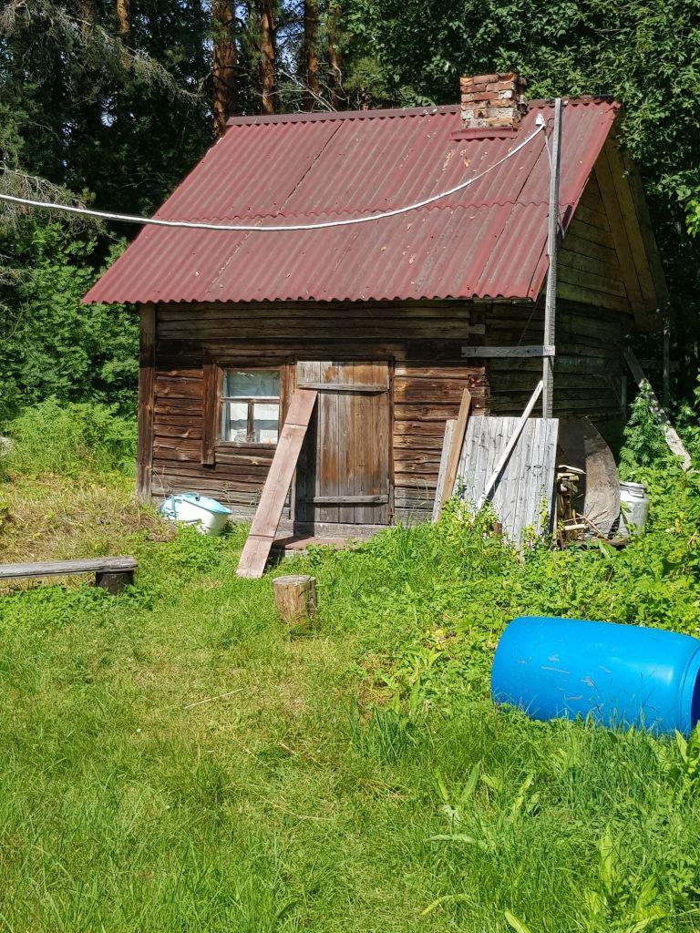 Eskolan talon sauna Marjalanniemessä on kylpykunnossa. (Kuva: Matti Pulkkinen)