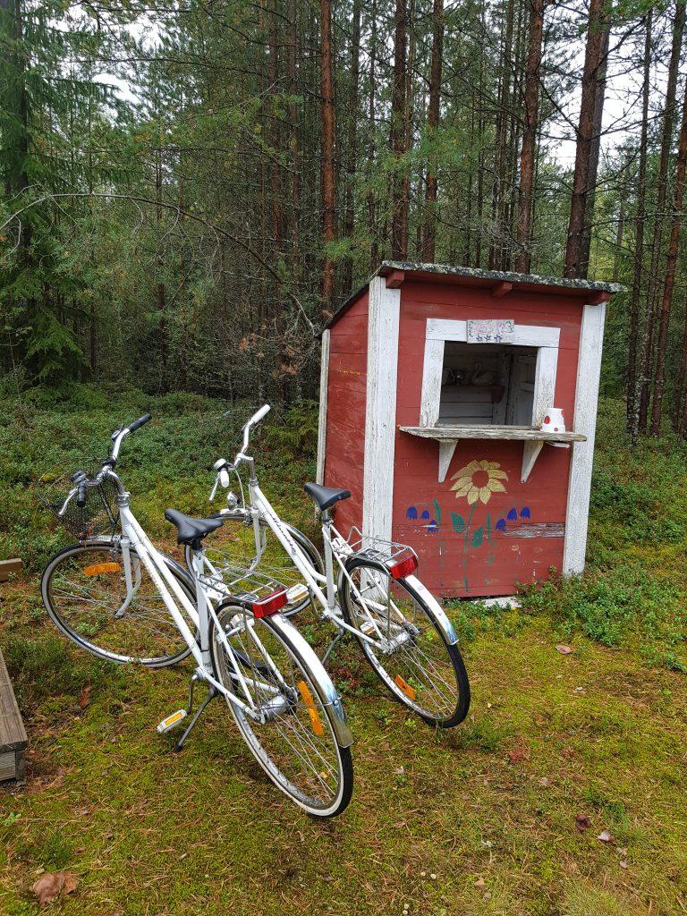 Koko Pirkanmaan ääni kantautui kiitettävästi Tampereen ja Pirkanmaan vuoden 2026 Euroopan kulttuuripääkaupunkihakuun, kun järjestäorganisaatio peräänkuulutti sisäktöideoita. 23 kunnasta muodostuvan maakunnan jokainen kolkka on tavalla tai toisella mukana. Ideoita kertyi reippaat 700 kappaletta. (Kuva: Matti Pulkkinen)