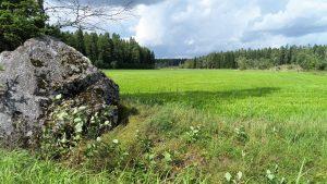 Valtaosa suomalaisesta ruoasta tulee suoraan tai välillisesti pelloilta. Suhteemme peltoon täytyy tutkijoiden mukaan muuttua monin tavoin.