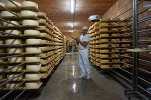 Vuosikymmenien määrätietoinen työ kantaa hedelmää. Sveitsiläislähtöinen juustomestari Peter Dörig on saanut juustoistansa kuulun kotimaansa ruokaperintöä jalkautettua Pirkanmaalle ja koko Suomeen. Juustokellari on vaikuttava kokemus. (Kuva: Matti Pulkkinen)